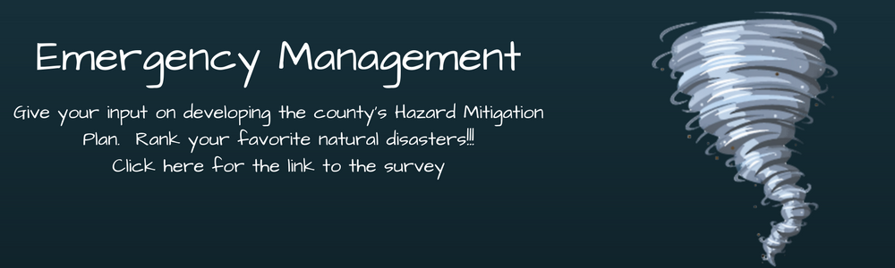 Hazard Mitigation Plan Survey